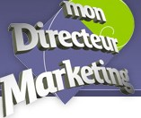 emploi directeur marketing
